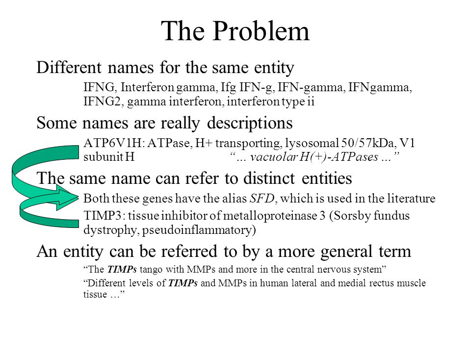 The Problem Different names for the same entity IFNG, Interferon gamma, Ifg IFN-g, IFN-gamma, IFNgamma, IFNG2, gamma interferon, interferon type ii Some names are really descriptions ATP6V1H: ATPase, H+ transporting, lysosomal 50/57kDa, V1 subunit H … vacuolar H(+)-ATPases … The same name can refer to distinct entities Both these genes have the alias SFD, which is used in the literature TIMP3: tissue inhibitor of metalloproteinase 3 (Sorsby fundus dystrophy, pseudoinflammatory) An entity can be referred to by a more general term The TIMPs tango with MMPs and more in the central nervous system Different levels of TIMPs and MMPs in human lateral and medial rectus muscle tissue …