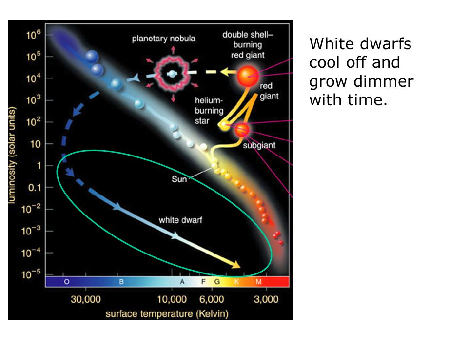 White dwarfs are the remaining cores of dead stars.