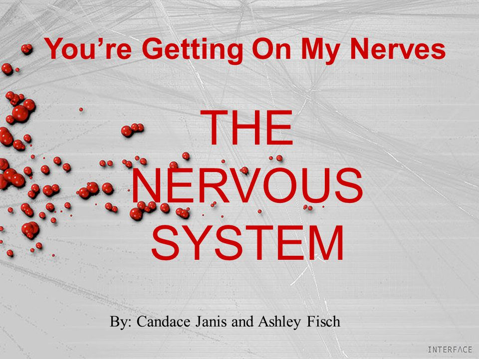 You're Getting On My Nerves THE NERVOUS SYSTEM By: Candace Janis and Ashley Fisch