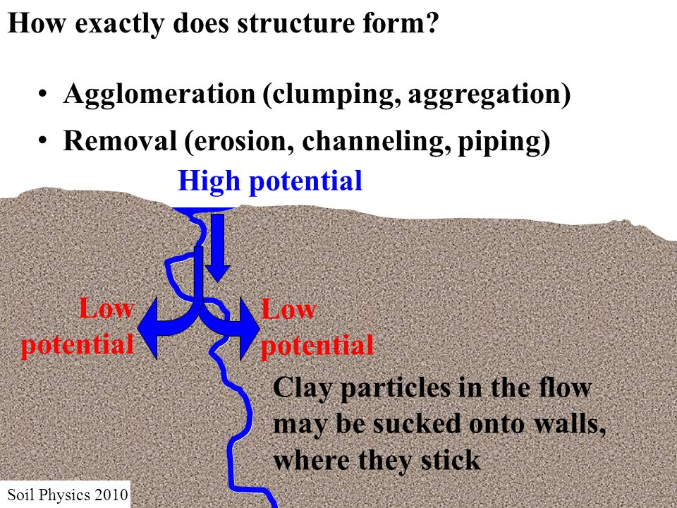 Soil Physics 2010 How exactly does structure form.