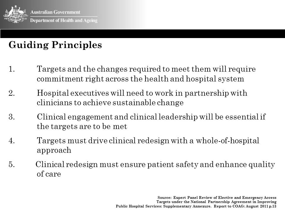 Guiding Principles 1. Targets and the changes required to meet them will require commitment right across the health and hospital system 2. Hospital ex