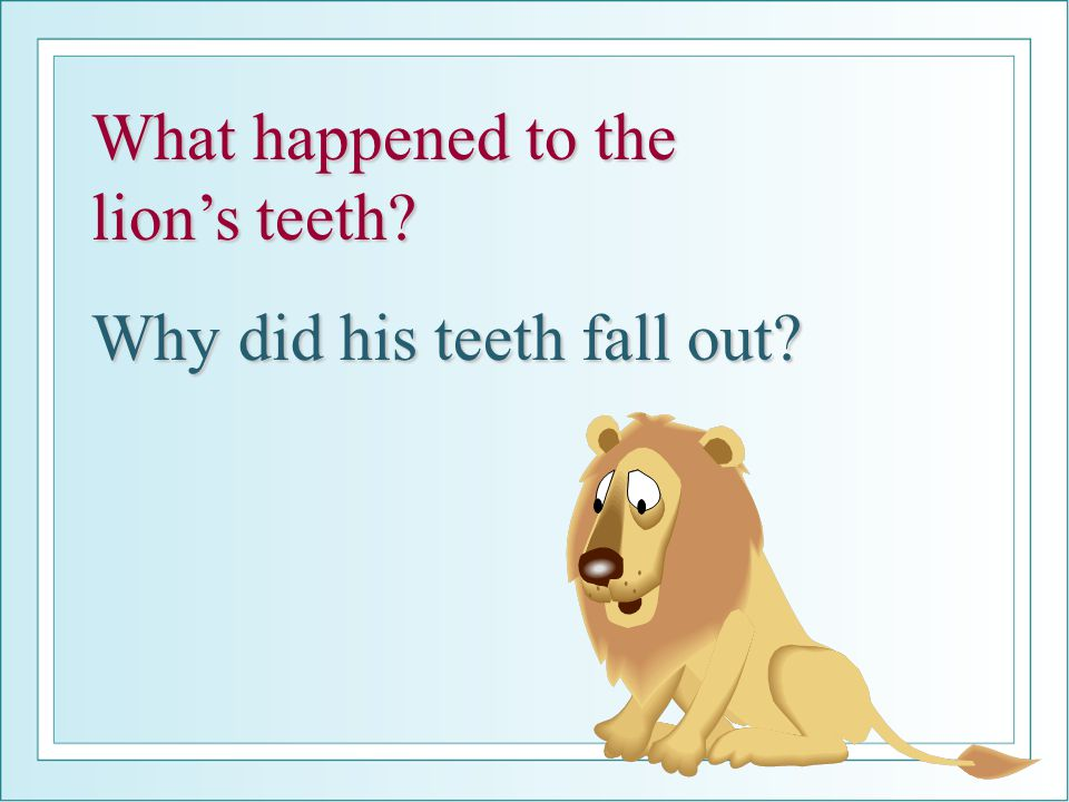 What happened to the lion's teeth? Why did his teeth fall out?