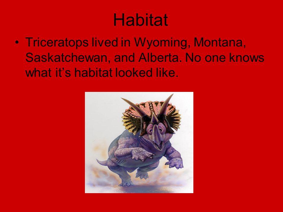 Habitat Triceratops lived in Wyoming, Montana, Saskatchewan, and Alberta.