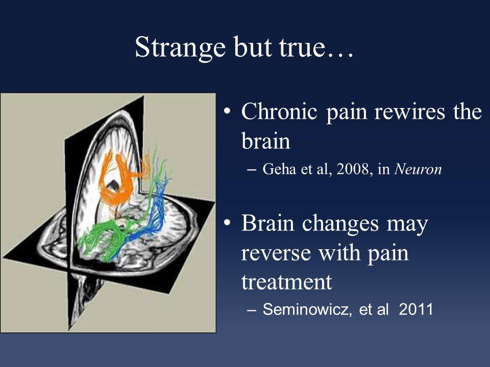 Strange but true… Chronic pain rewires the brain – Geha et al, 2008, in Neuron Brain changes may reverse with pain treatment –Seminowicz, et al 2011