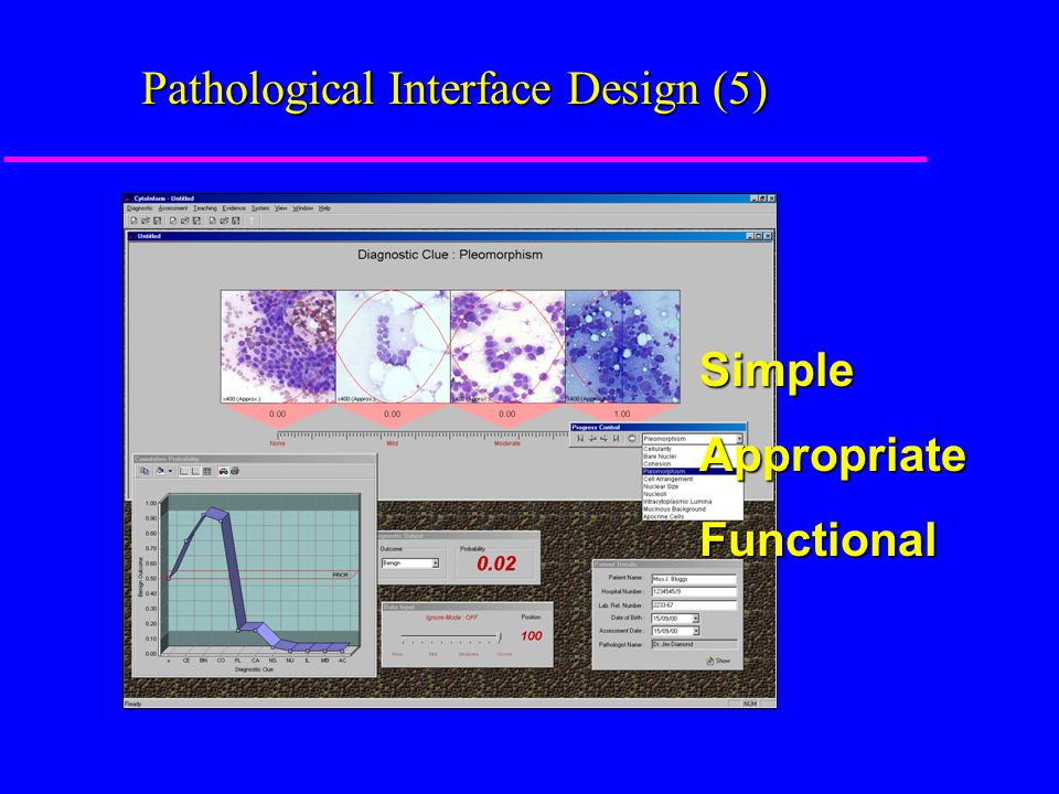 Pathological Interface Design (5) SimpleAppropriateFunctional