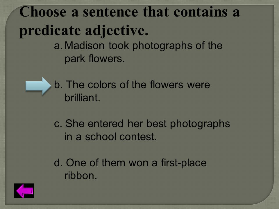 Choose a sentence that contains a predicate adjective. a.Madison took photographs of the park flowers. b. The colors of the flowers were brilliant. c.
