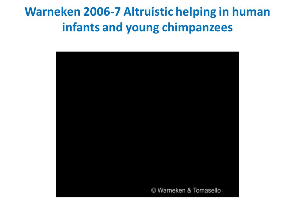 Warneken 2006-7 Altruistic helping in human infants and young chimpanzees