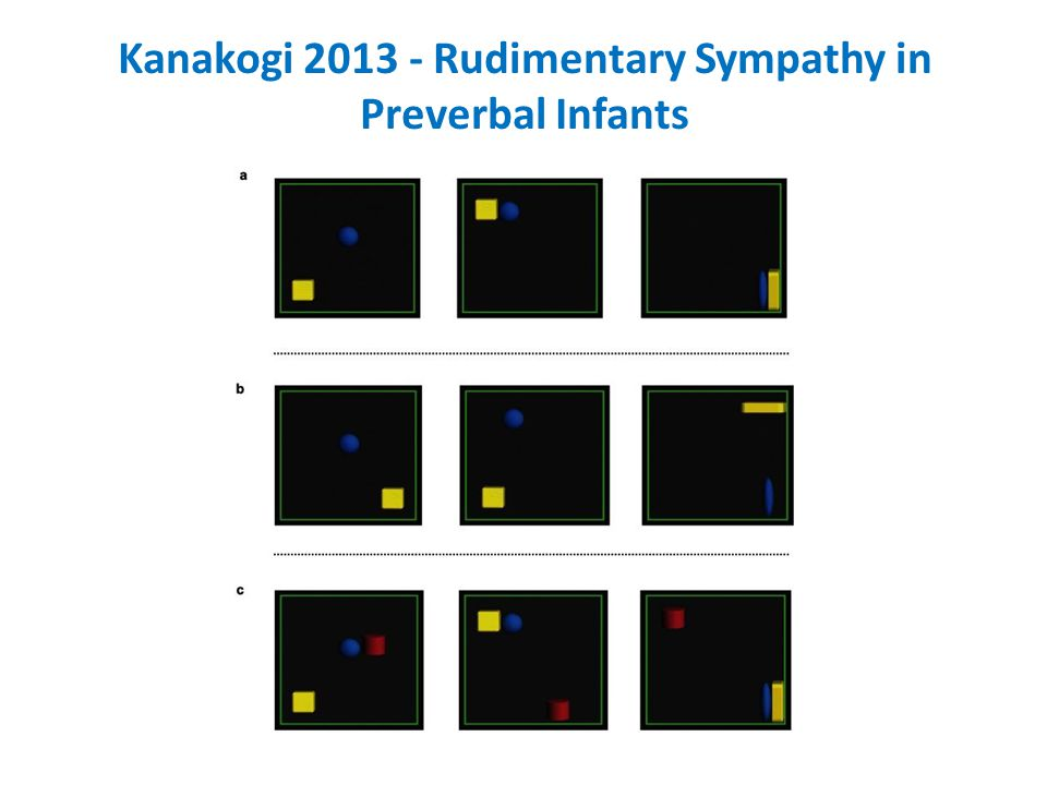 Kanakogi 2013 - Rudimentary Sympathy in Preverbal Infants