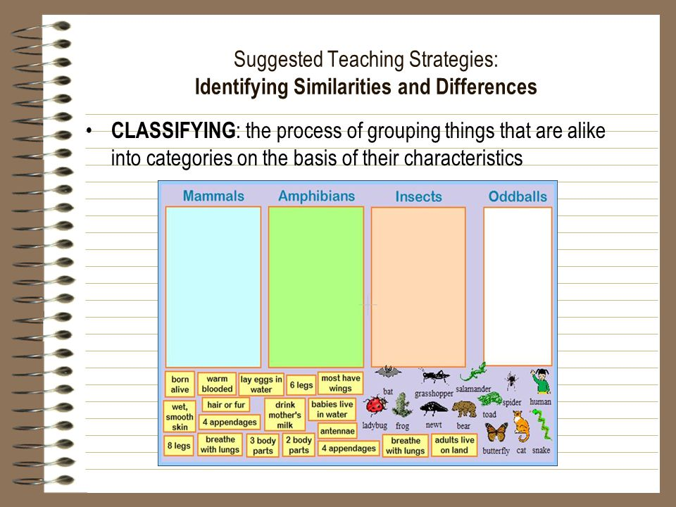 Suggested Teaching Strategies: Identifying Similarities and Differences CLASSIFYING : the process of grouping things that are alike into categories on the basis of their characteristics
