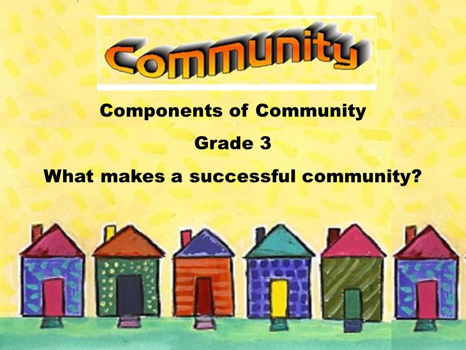 Components of Community Grade 3 What makes a successful community