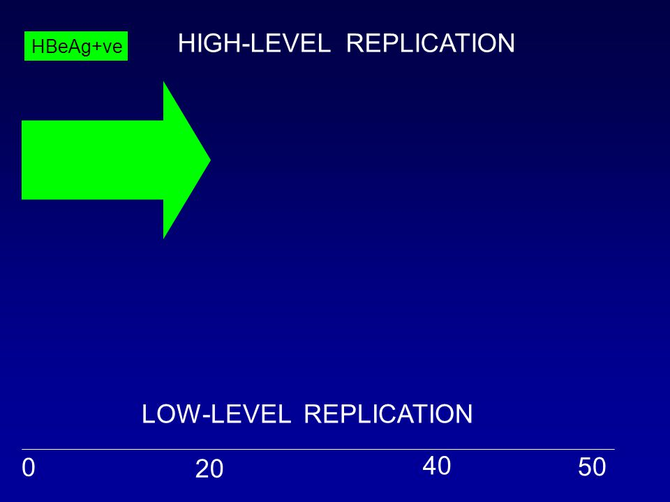 0 20 40 50 HBeAg+ve HIGH-LEVEL REPLICATION LOW-LEVEL REPLICATION