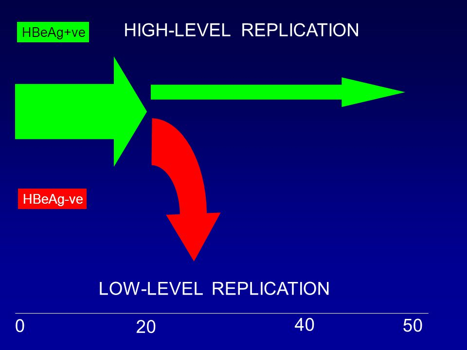 0 20 40 50 HBeAg+ve HBeAg-ve HIGH-LEVEL REPLICATION LOW-LEVEL REPLICATION