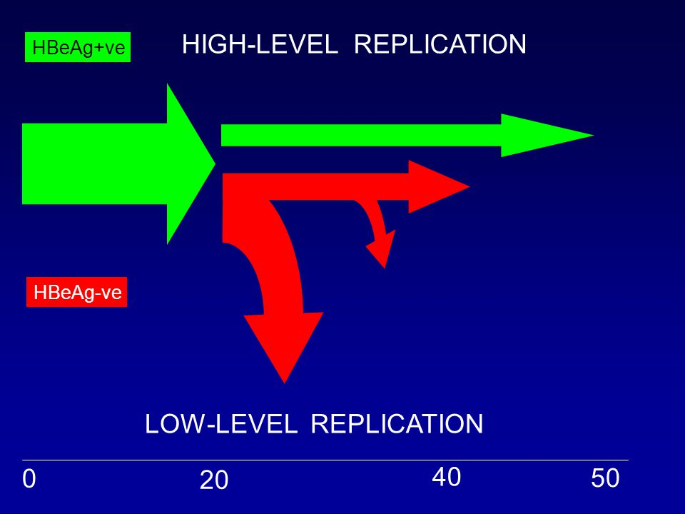 HIGH-LEVEL REPLICATION LOW-LEVEL REPLICATION 0 20 40 50 HBeAg+ve HBeAg-ve