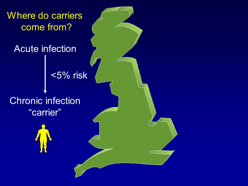 Where do carriers come from Acute infection Chronic infection carrier <5% risk