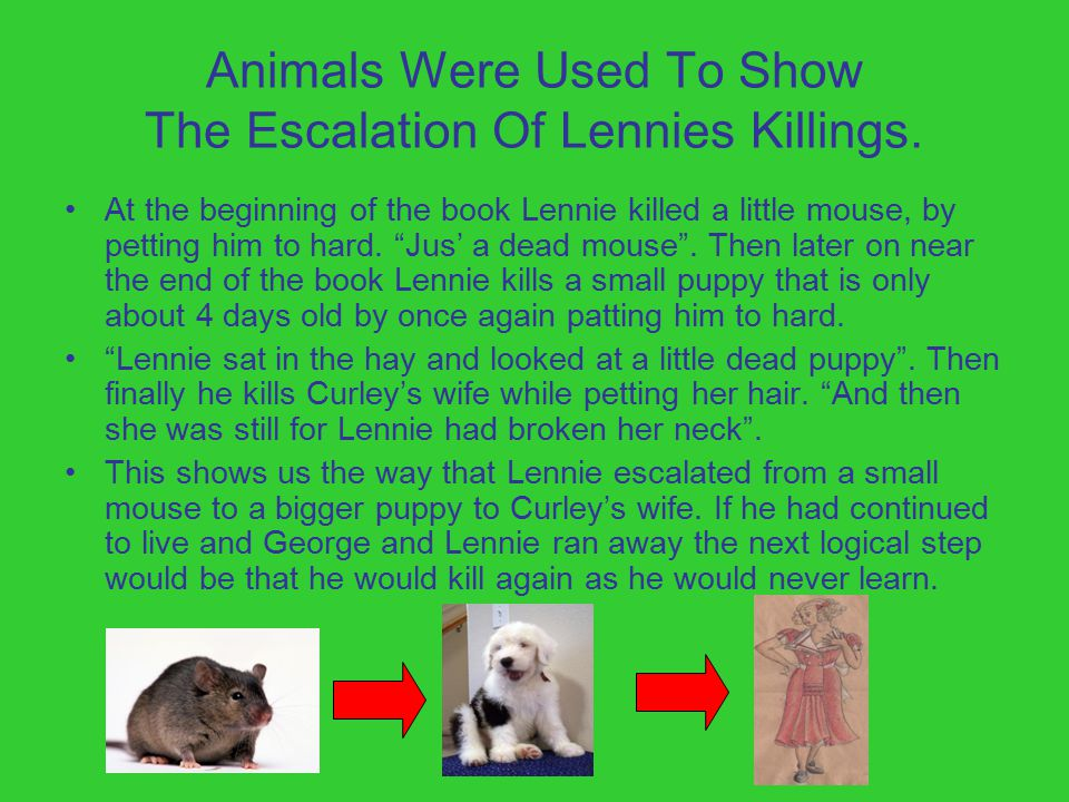 Animals Were Used To Show The Escalation Of Lennies Killings.