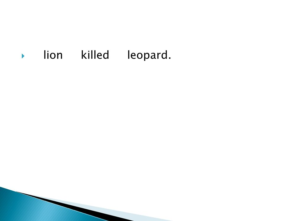  lion killed leopard.