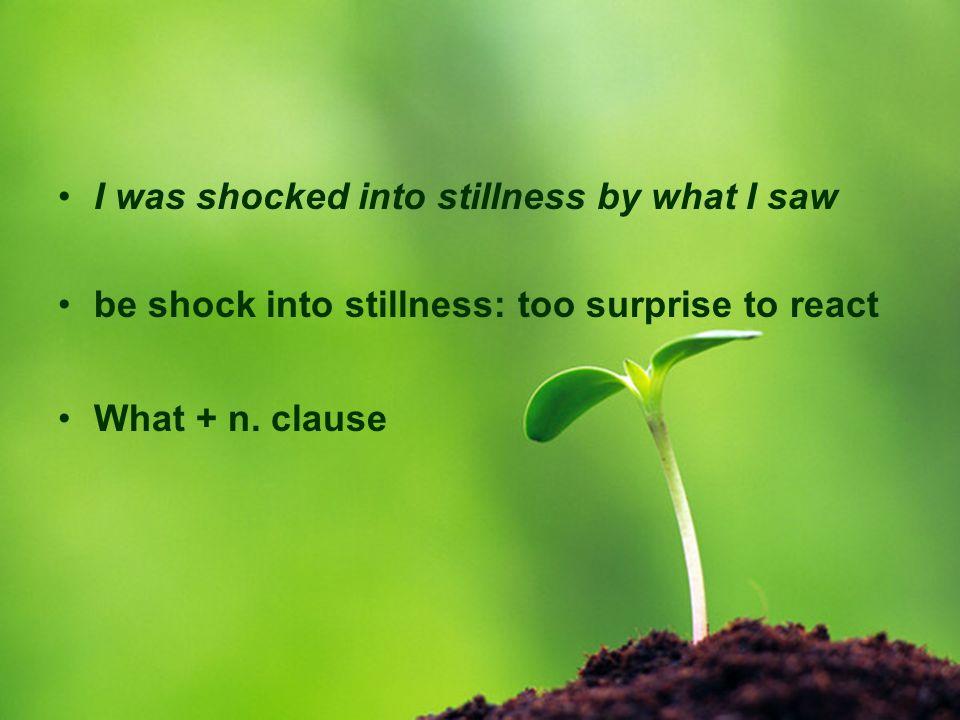 I was shocked into stillness by what I saw.