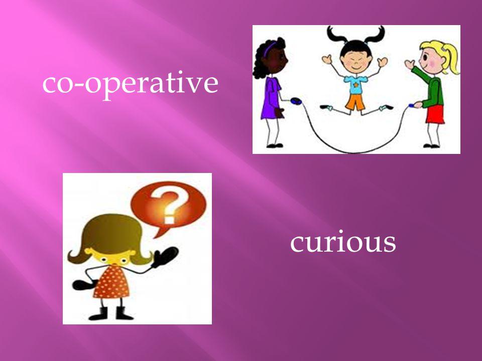 curious co-operative