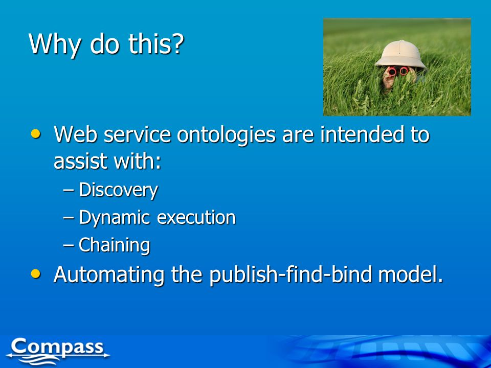 What's in the ontology for each web service.