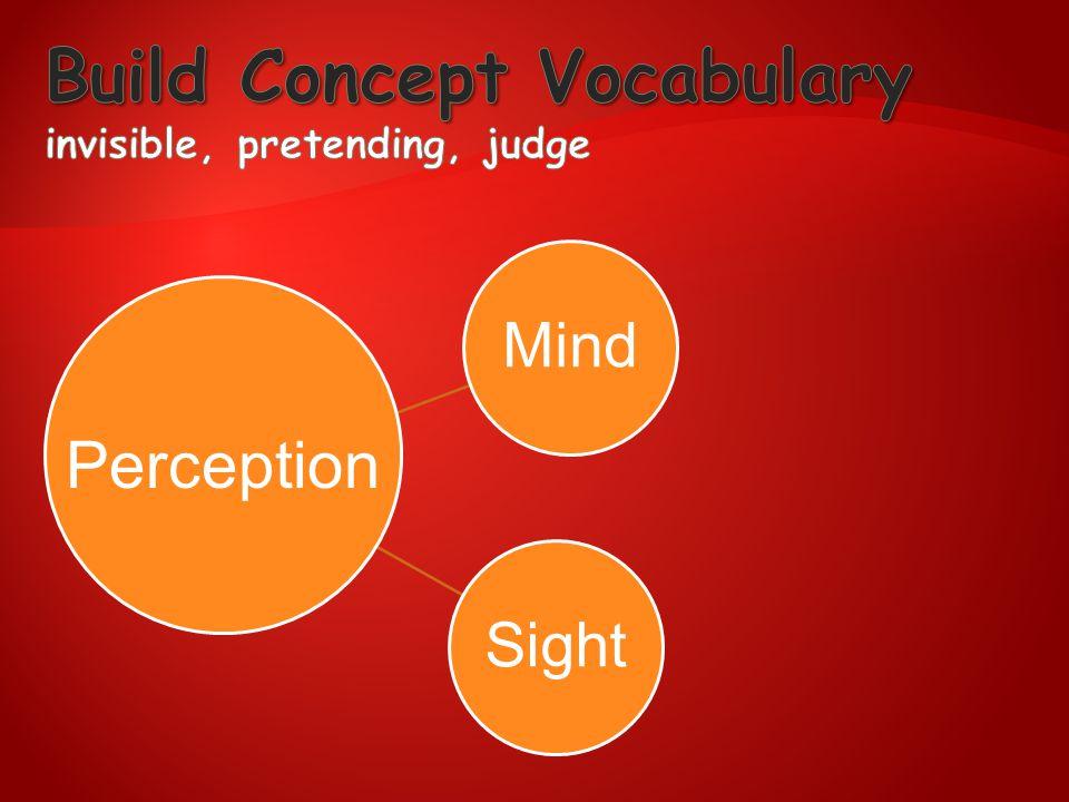 MindSight Perception