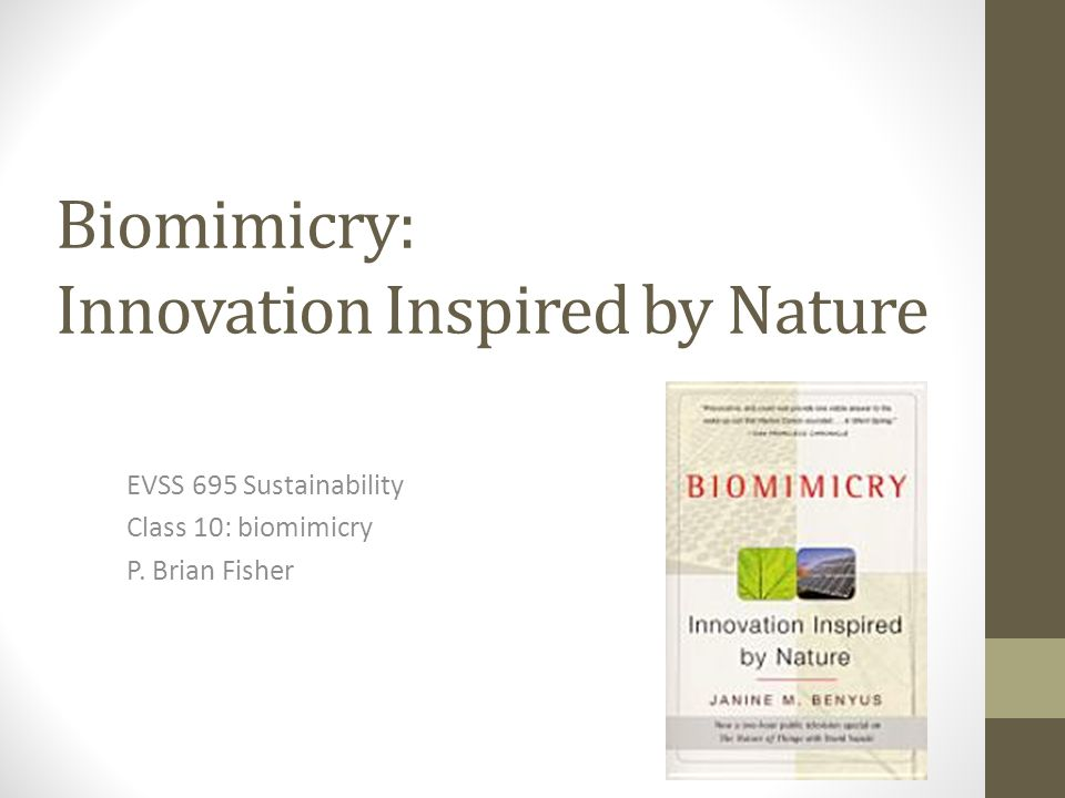 Biomimicry: Innovation Inspired by Nature EVSS 695 Sustainability Class 10: biomimicry P.