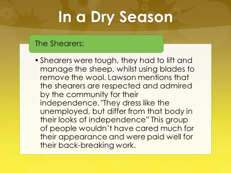 In a Dry Season Shearers were tough, they had to lift and manage the sheep, whilst using blades to remove the wool. Lawson mentions that the shearers