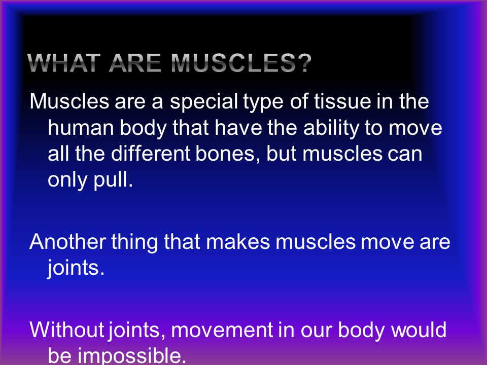 Muscles are a special type of tissue in the human body that have the ability to move all the different bones, but muscles can only pull. Another thing