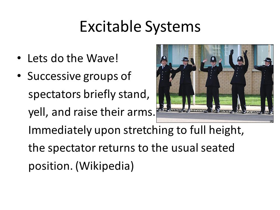 Excitable Systems Lets do the Wave.