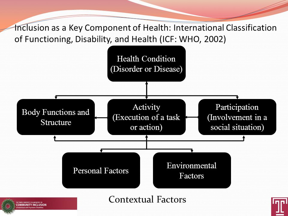 Inclusion as a Key Component of Health: International Classification of Functioning, Disability, and Health (ICF: WHO, 2002) Health Condition (Disorder or Disease) Body Functions and Structure Activity (Execution of a task or action) Participation (Involvement in a social situation) Personal Factors Environmental Factors Contextual Factors