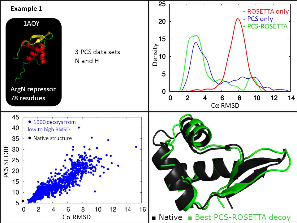 PCS SCORE Cα RMSD 1000 decoys from low to high RMSD Native structure ArgN repressor 78 residues 1AOY Cα RMSD Density 3 PCS data sets N and H Example 1