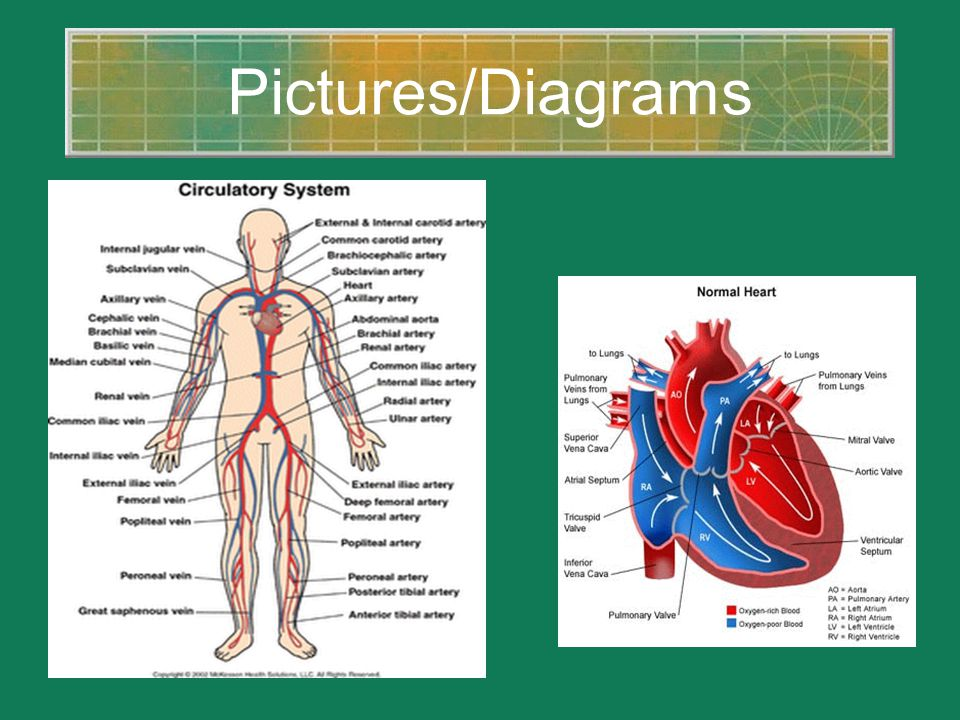 Pictures/Diagrams