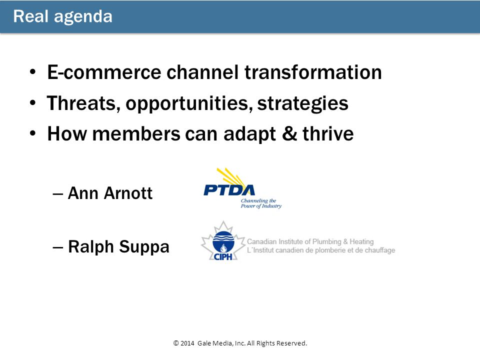 E-commerce channel transformation Threats, opportunities, strategies How members can adapt & thrive – Ann Arnott – Ralph Suppa Real agenda © 2014 Gale