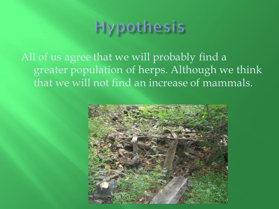 All of us agree that we will probably find a greater population of herps.