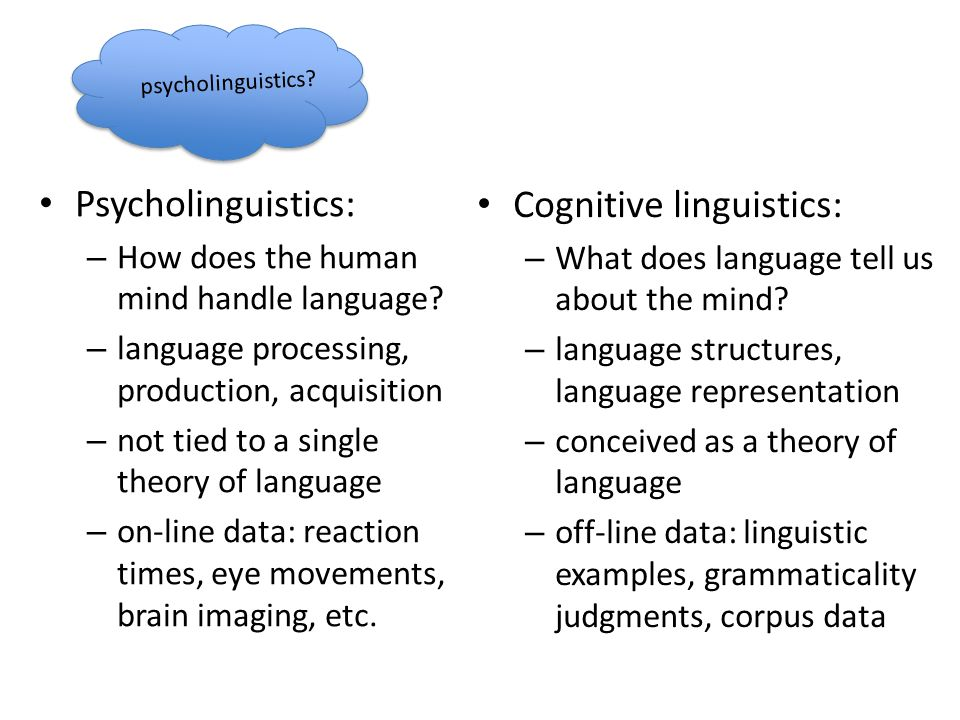 Psycholinguistics: – How does the human mind handle language? – language processing, production, acquisition – not tied to a single theory of language