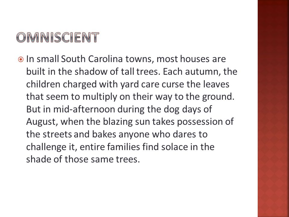  In small South Carolina towns, most houses are built in the shadow of tall trees.