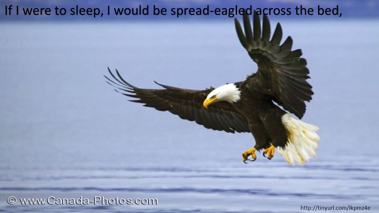 If I were to sleep, I would be spread-eagled across the bed, http://tinyurl.com/lkpmz4e