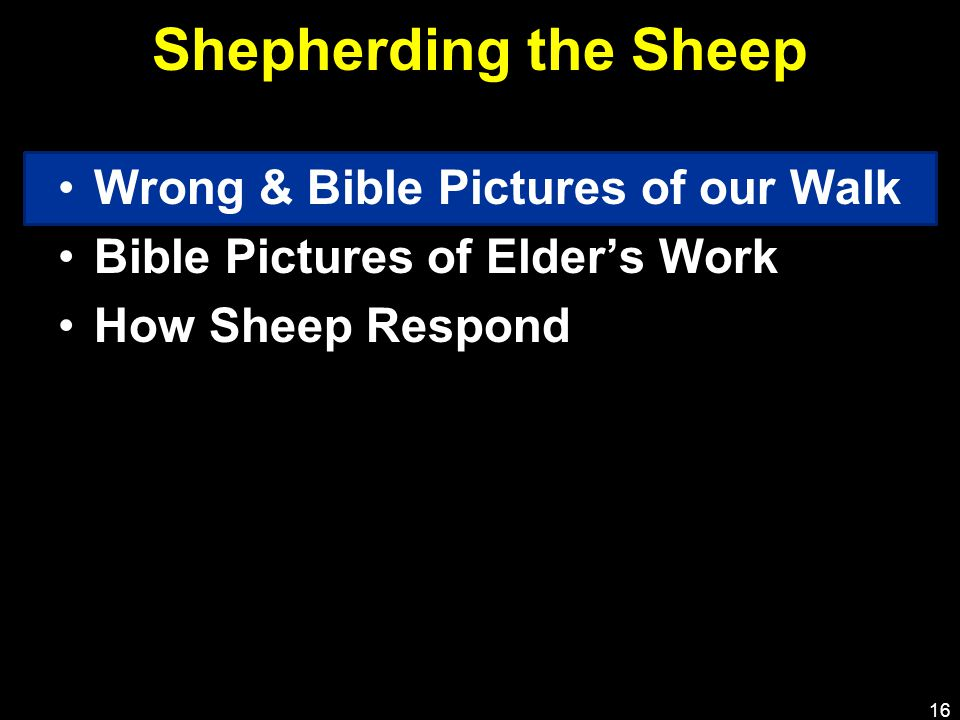 Shepherding the Sheep Wrong & Bible Pictures of our Walk Bible Pictures of Elder's Work How Sheep Respond 16