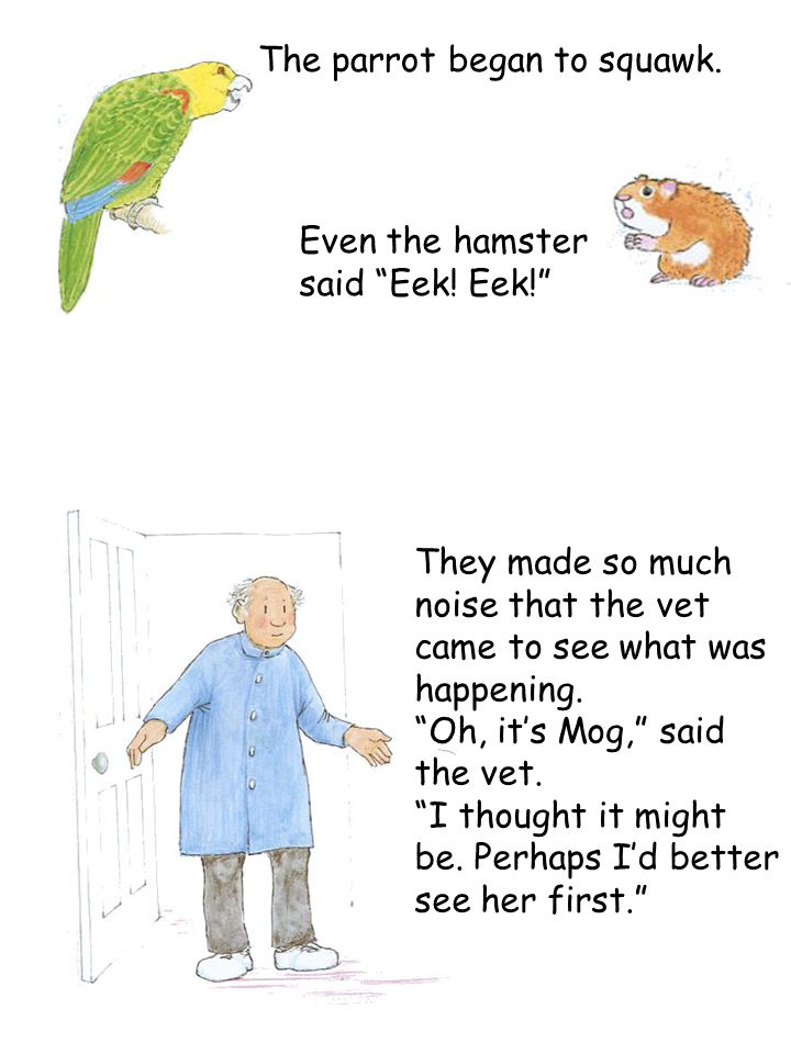 "The parrot began to squawk. Even the hamster said ""Eek! Eek!"" They made so much noise that the vet came to see what was happening. ""Oh, it's Mog,"" sai"