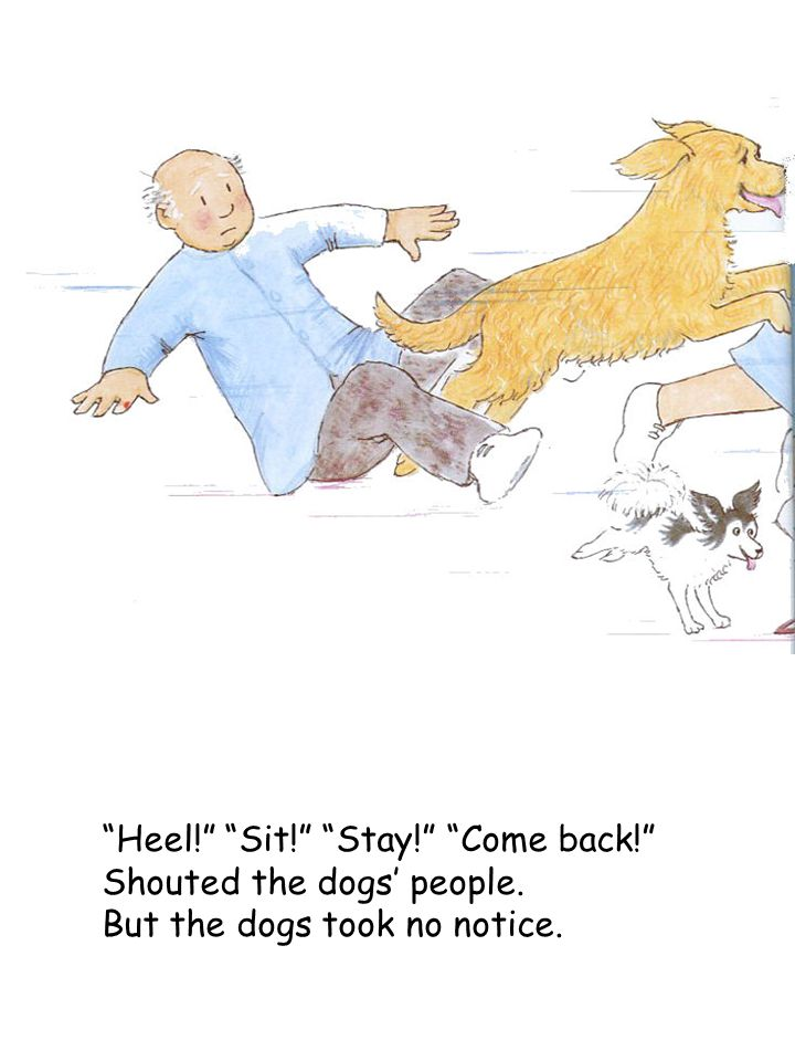 """Heel!"" ""Sit!"" ""Stay!"" ""Come back!"" Shouted the dogs' people. But the dogs took no notice."
