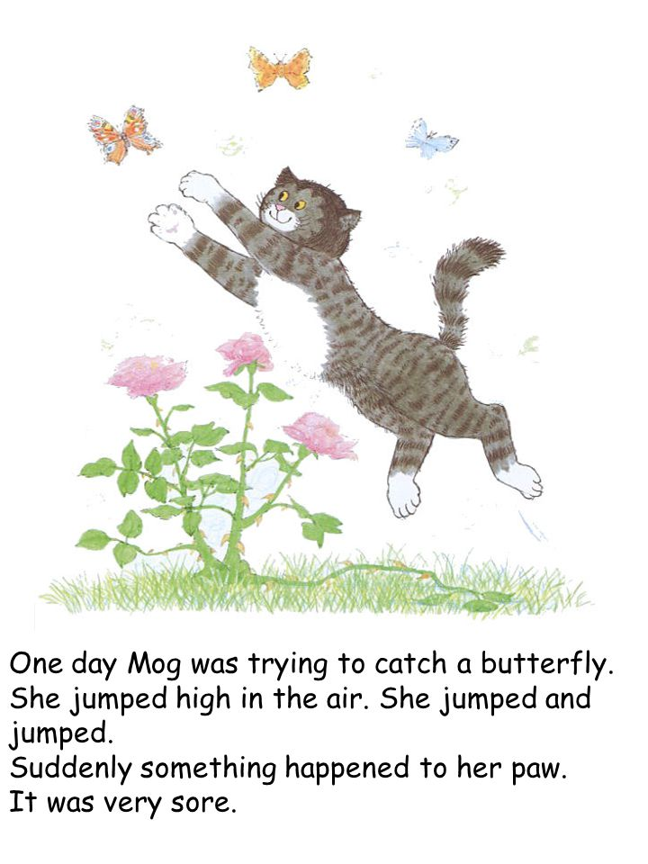 One day Mog was trying to catch a butterfly. She jumped high in the air. She jumped and jumped. Suddenly something happened to her paw. It was very so