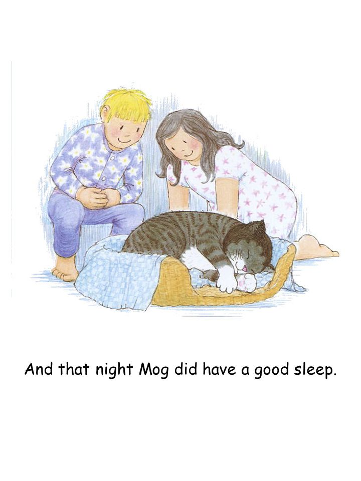 And that night Mog did have a good sleep.