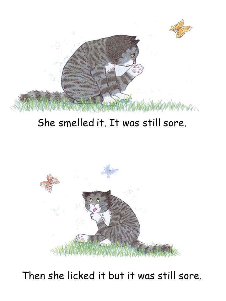 She smelled it. It was still sore. Then she licked it but it was still sore.
