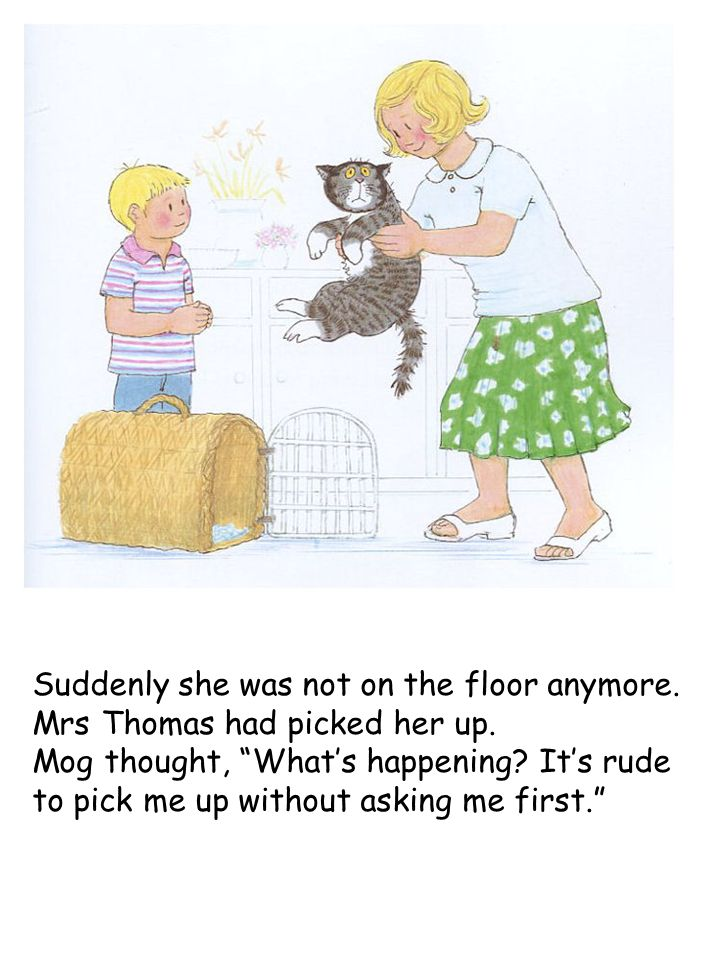"Suddenly she was not on the floor anymore. Mrs Thomas had picked her up. Mog thought, ""What's happening? It's rude to pick me up without asking me fir"