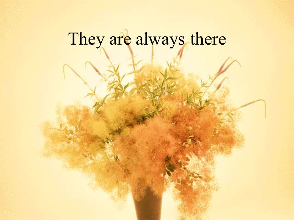 They are always there