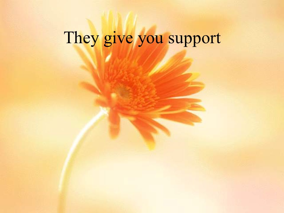 They give you support
