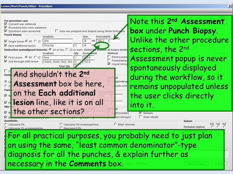 Note this 2 nd Assessment box under Punch Biopsy.