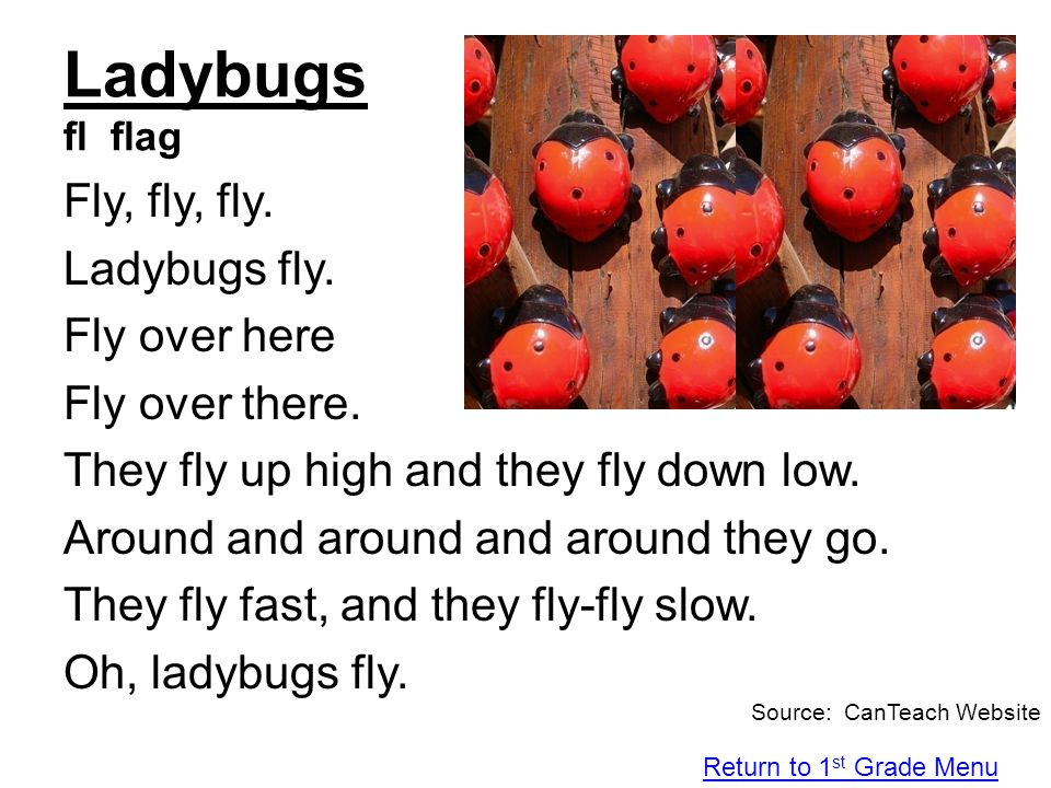 Ladybugs fl flag Fly, fly, fly. Ladybugs fly. Fly over here Fly over there. They fly up high and they fly down low. Around and around and around they