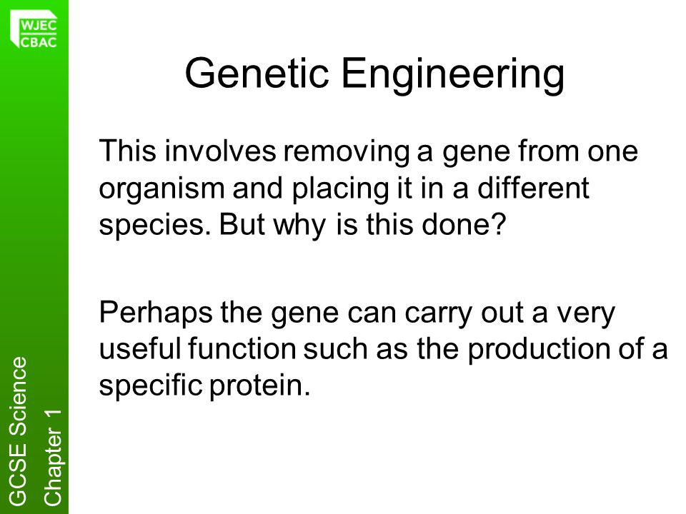Genetic Engineering This involves removing a gene from one organism and placing it in a different species. But why is this done? Perhaps the gene can