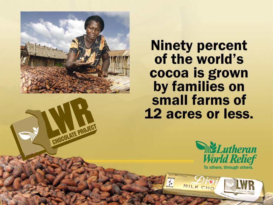Did you know that most cocoa farmers have never tasted a chocolate bar?