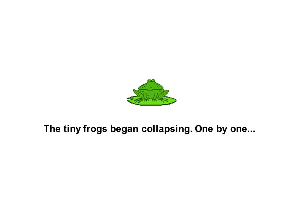 The tiny frogs began collapsing. One by one...